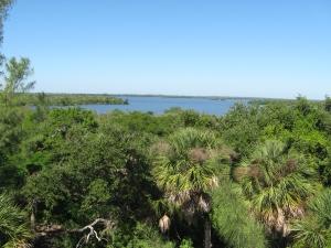 Captiva cruises-tower view
