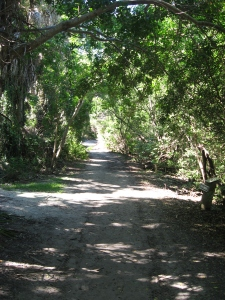 Captiva cruises-Cabbage Key trail