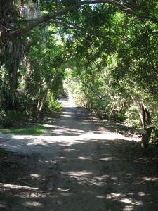Captiva cruises-Cabbage Key trail